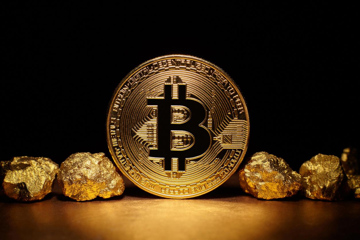 bitcoin fraudă